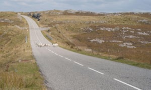 Sheep on road, Isle of Lewis