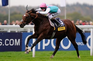 Ascot Farewell to Frankel: Champions Day racing Ascot