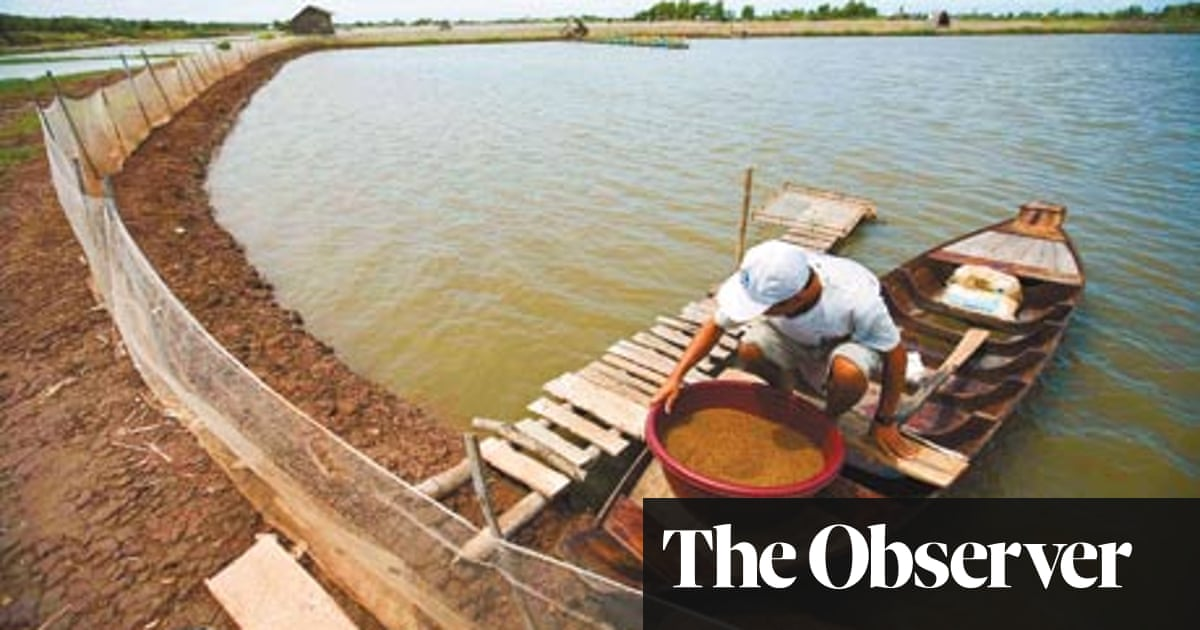 Alex Renton on the growing demand for tiger prawns and Vietnam's
