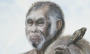 homo-floresiensis-hobbit