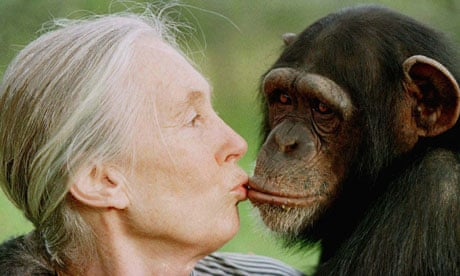 Jane goodall research paper