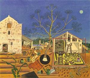 miro-the farm