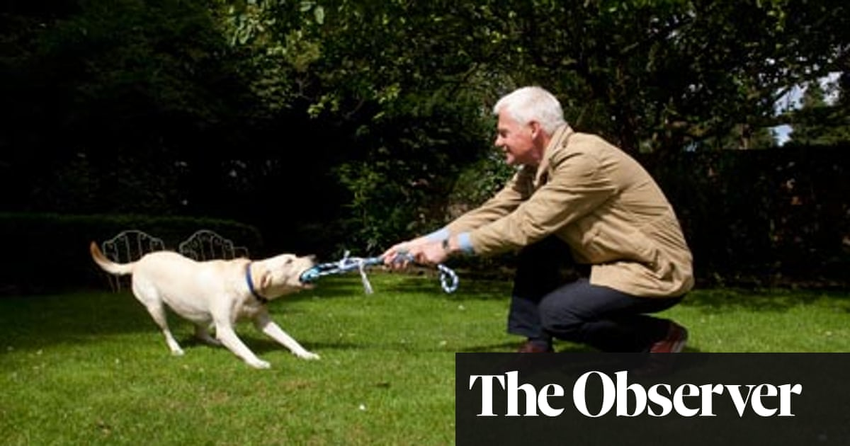 Why dog trainers will have to change their ways | Science