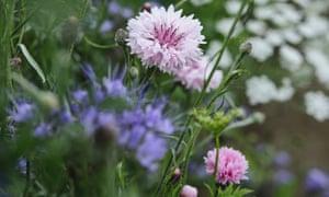 gardens1408