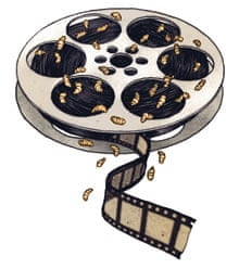 Film reel covered in maggots