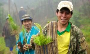 Peruvian farmers with saplings