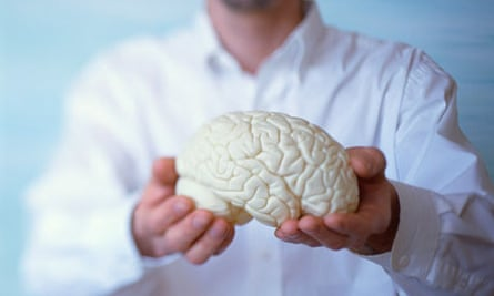 Holding Model of a Brain