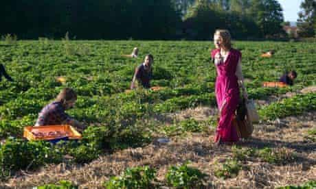 strawberry fields frances lea