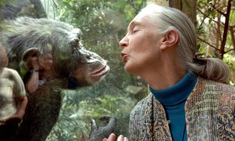 What kinds of science courses did Jane Goodall take?