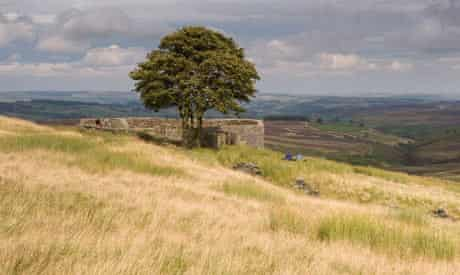 Heathcliffe country, Yorkshire: the ruins of Top Withens