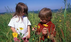 Children in wheat field with poppies flowers
