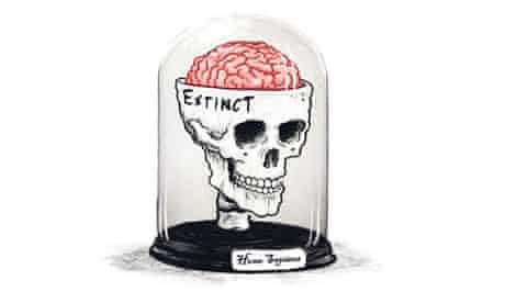 Skull and brain in a vitrine
