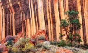 Stripes of desert varnish