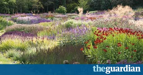 A plantsman 39 s vision piet oudolf life and style the for Piet oudolf favorite plants