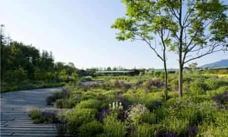 Japan's Millennium Forest by Dan Pearson