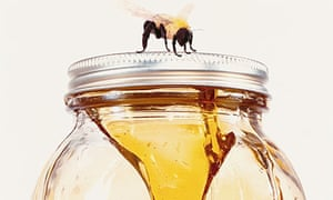 A bee on top of a jar of honey