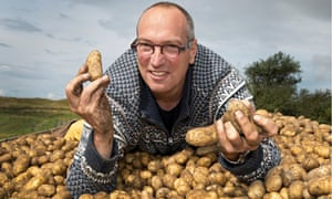 salt-tolerant potatoes