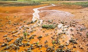 Wheal Jane contamination