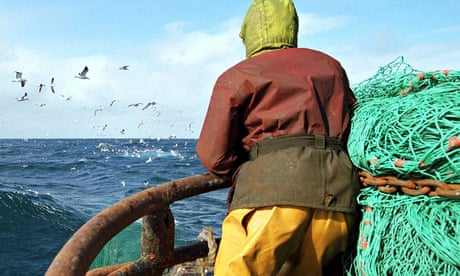 Bottom trawling: how to empty the seas in just 150 years