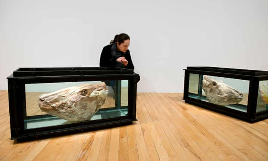 'Rotting': Damien Hirst's Out of Sight, Out of MInd (1991), featured in Roger Hiorns's curated secti