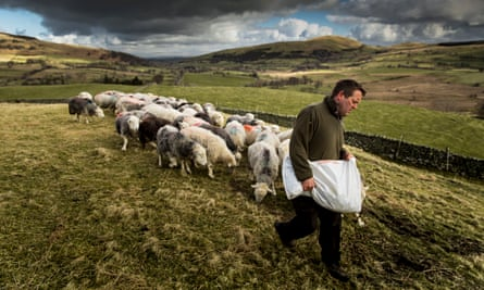 'Modest': James Rebanks on his farm at Matterdale End in Cumbria.