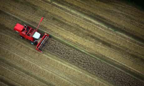 A combine harvester works the fields