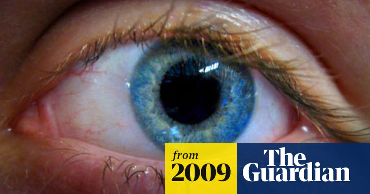 Stroke patients regain sight after brain training | Science