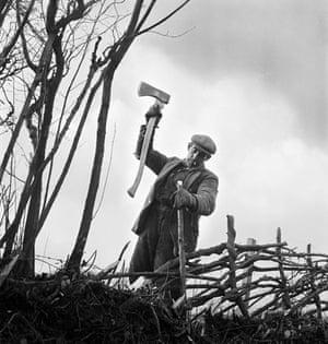 Gallery John Gay retrospective: Hedger in Bridgnorth, Shropshire