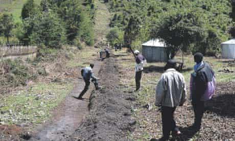 Work on Aberdare park fence, Kenya