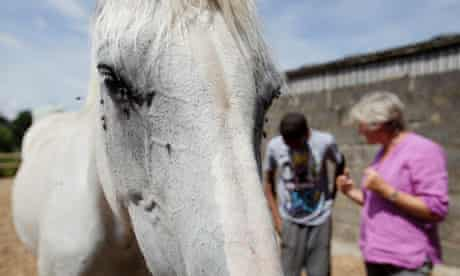 Jamie's Farm, horse whispering