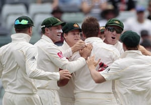 Ashes 2010: Ryan Harris celebrates the wicket of Ian Bell