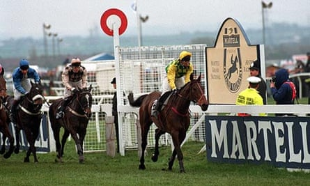 The 1993 Grand National