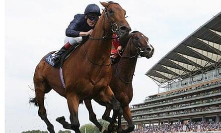 Duke of Marmalade, horse racing