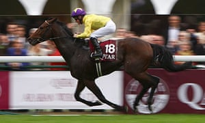 Sea The Stars could be bound for Irish National Stud | Sport | The