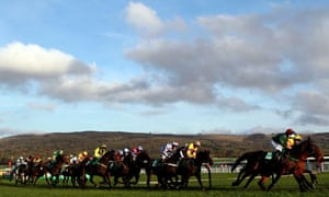 The field for the Paddy Power Gold Cup 2011 round a bend