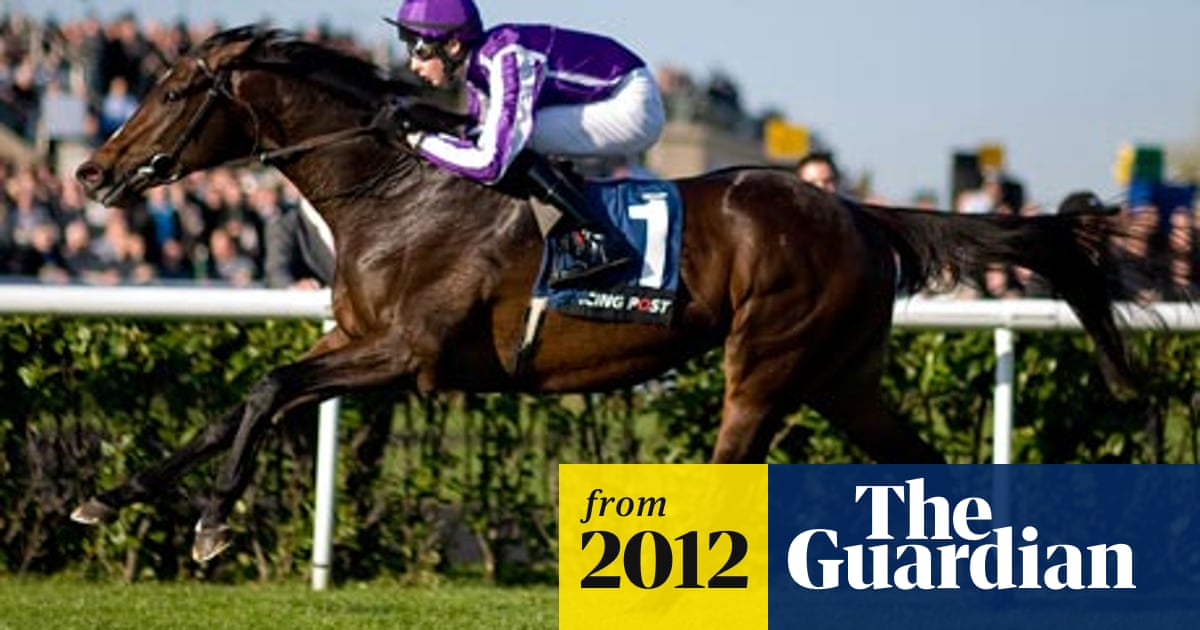 camelot 2000 guineas betting