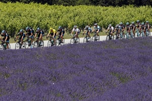 Ashes Day 5 Gallery: Tour De France Stage 15