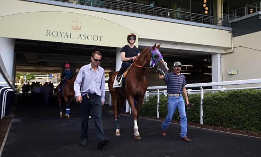 Horse Racing - California Chrome - Ascot Racecourse