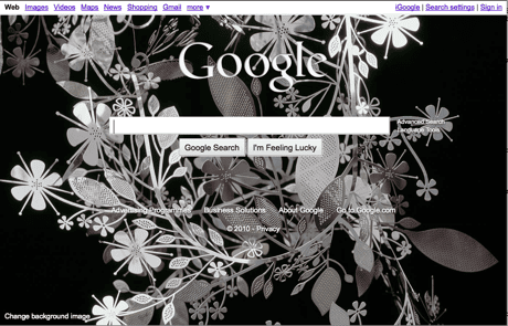 Google search page with image