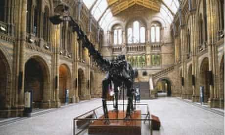 naturaldinosaur