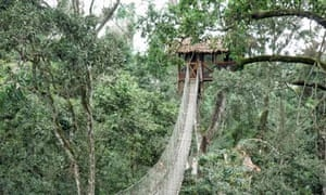 Inkaterra tree house