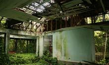 Errol Flynn's ruined home