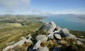 New Zealand Otago Harbour