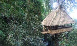 Laos Jungle Hotel Paksong