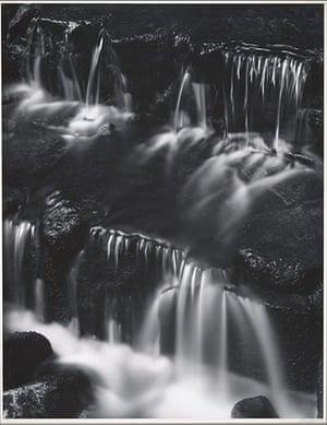 Ansel Adams: Ansel Adams: Fern Spring, Dusk, Yosemite Valley