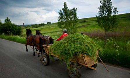 Farmer, Miklosvar