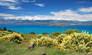 Lago G Carrera