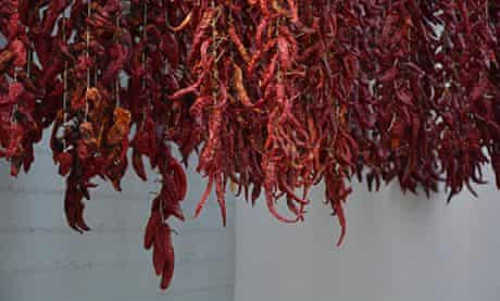 Sweet red peppers drying