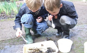 Pond-dipping at Epping Forest Field Centre