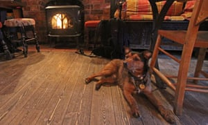 Wilf settles down at The Durham Ox, Crayke.